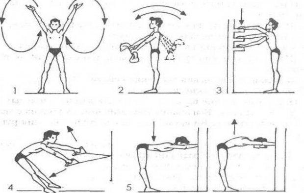 Примерный комплекс упражнений на суше для баттерфляя