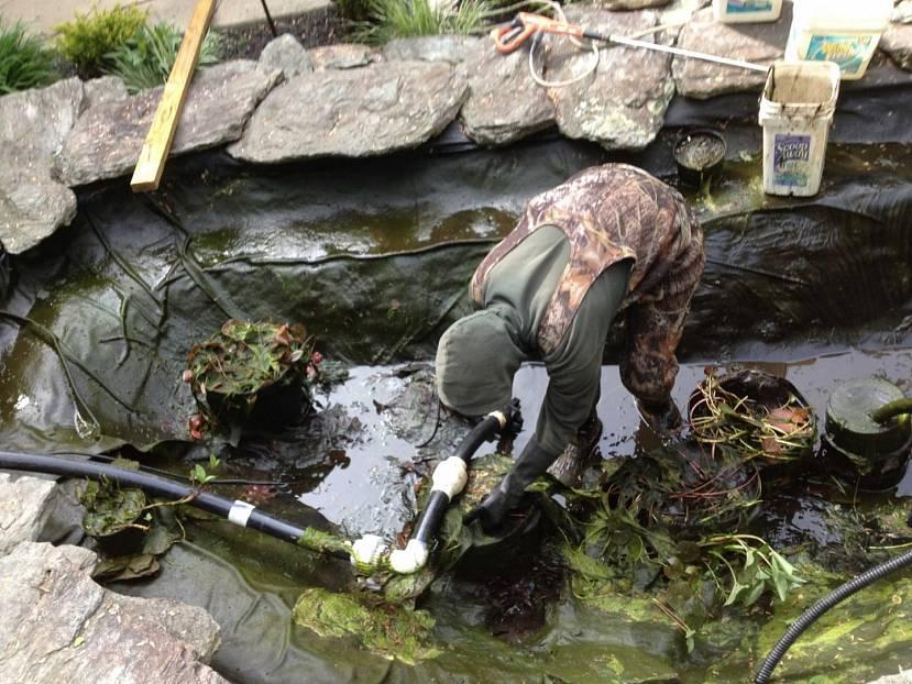 Подготовка пруда к зиме