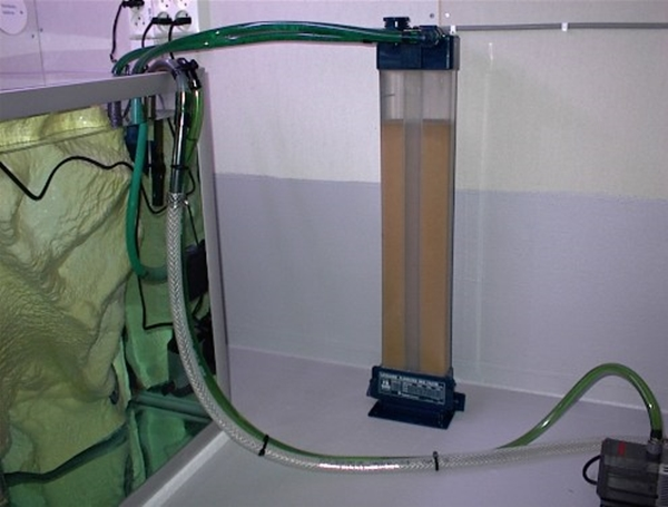 песчаный фильтр для аквариума