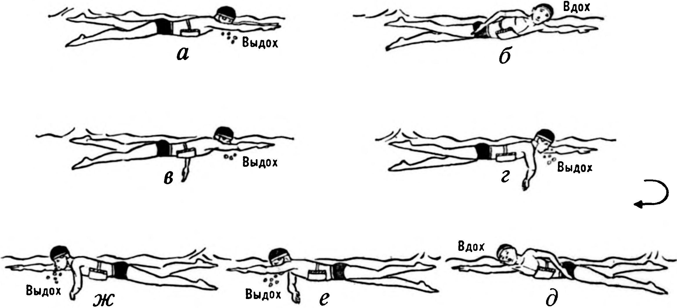Работа рук при плавании кролем