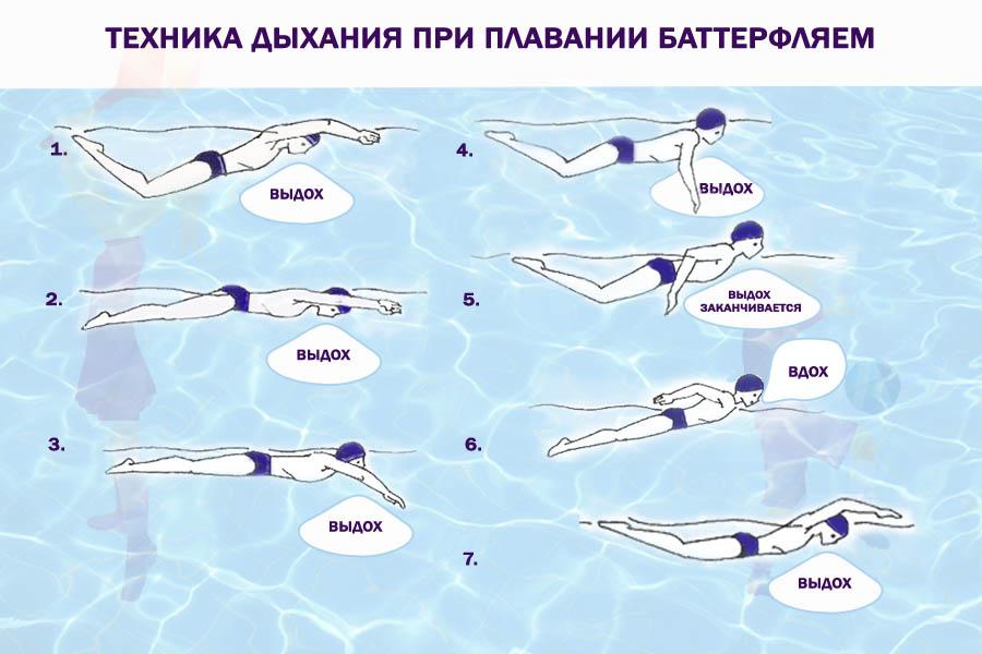 Техника дыхания при плавании баттерфляй